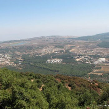 שמורת הר מירון